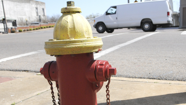 Officials with the Selma Water Works are proposing a plan to replace all of the city's fire hydrants. -- Josh Bergeron