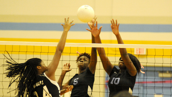 Selma High School will host a volleyball camp June 10-11 that will teach girls ages 10-18 the basic, fundamental skills of the game. For more information, contact Melissa White at 657-4381.--Daniel Evans