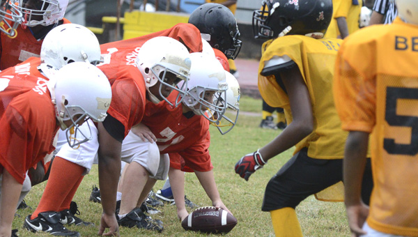 it's almost time: The Broncos and Bears get ready for a snap in a youth football game last season at Memorial Stadium. The Selma Recreation Department is expecting over 600 football players to sign up for this year's city league.  (File Photo | Times-Journal)